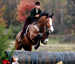 cross-country jump hunter pace in Dutchess County, NY